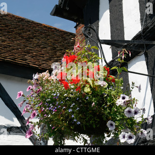 Hanging basket Kings Arms Hotel Ombersley Worcestershire England UK - Stock Photo