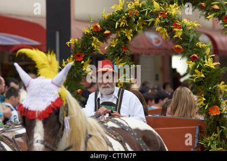 White bearded coachman - Stock Photo
