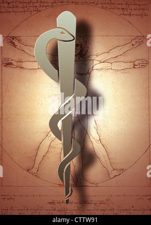Aeskulap Stab vor Leonardo da Vincis Menschenbild / Anatomiestudie - Stock Photo