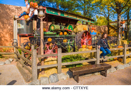 Halloween decorations in frontierland disneyland resort for Amusement park decoration ideas