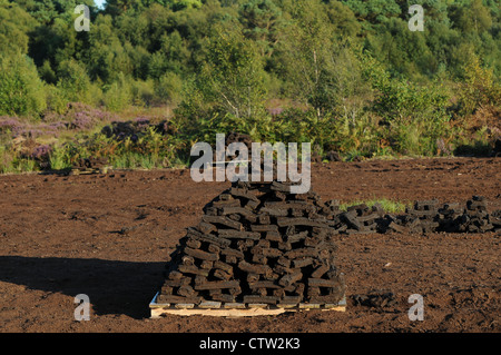 Sods of turf stacked to dry on, Emlagh Bog, Oristown, Kells, County Meath, Ireland - Stock Photo