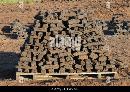 Sods of turf stacked to dry on a wooden pallet on, Emlagh Bog, Oristown, Kells, County Meath, Ireland - Stock Photo