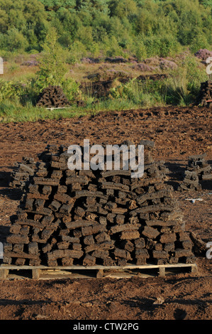 Sods of turf stacked to dry on a wooden pallet , Emlagh Bog, Oristown, Kells, County Meath, Ireland - Stock Photo
