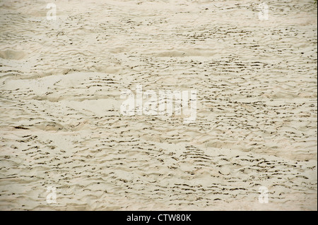 Amity Canal went dry due to drought in Lamar, Colorado. - Stock Photo