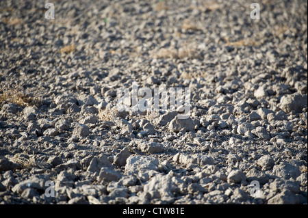 Dry, shallow turned field during severe drought in Kansas, USA. - Stock Photo