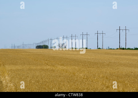 Heat haze blurs power lines on the horizon in Kansas, USA. Temps regularly topped 107 Fahrenheit in July 2012. - Stock Photo