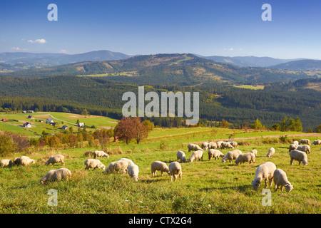 Silesian Beskids Landscape Park, Poland, Europe - Stock Photo