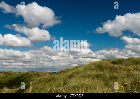 Wolkenhimmel mit Wiese, sky with clouds over meadow - Stock Photo