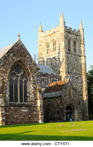 wimborne minster milf women English male been single for a few years now ( widower ) i am in my late 50's who now has the attitude life is so damn short, so just do what makes you happy so i am seeking a female aged.