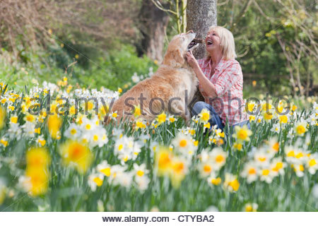 Happy woman playing with dog in sunny daffodil field - Stock Photo