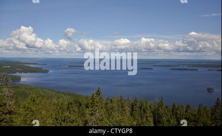 View of lake Pielinen from Koli national park. - Stock Photo