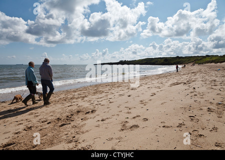 Couple walking dogs on Lligwy Beach, Near Moelfre, Anglesey, Wales - Stock Photo