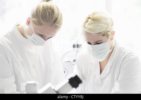 Scientists working together in lab - Stock Photo