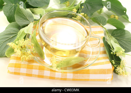 hot lime blossom tea with fresh flowers and leaves - Stock Photo