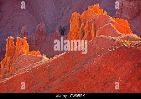 Close-up view of the amphitheater rocks in the Cedar Breaks National Monument, Utah - Stock Photo