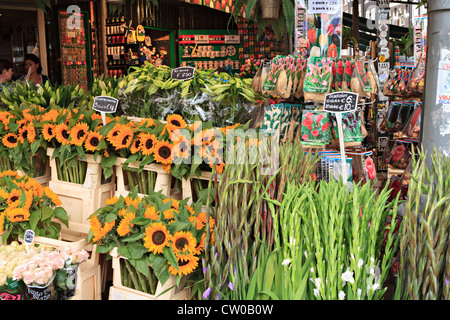 Flower shop in Amsterdam. A shop sells fresh flowers as well as souvenirs and bulbs to tourists. - Stock Photo