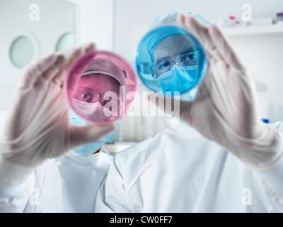 Scientists examining petri dishes in lab