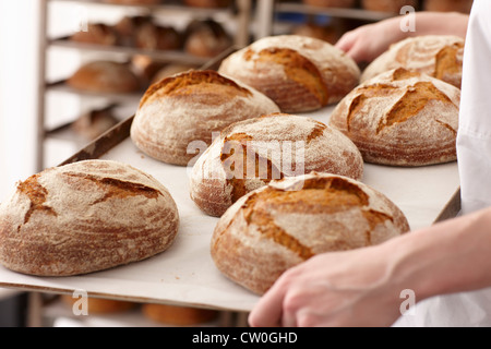 Chef carrying tray of bread in kitchen - Stock Photo