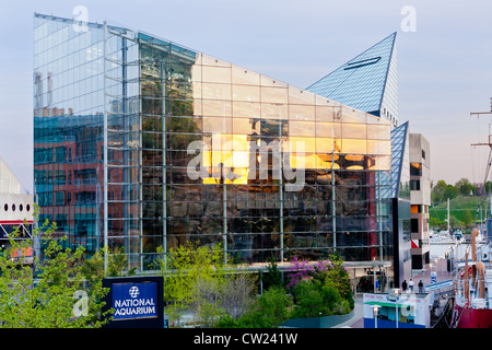 National Aquarium in Baltimore, Maryland at inner harbor - Stock Photo