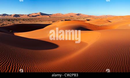 Intricate dune pattern lit up by morning sun. Sossusvlei in the Namib desert. Namib-Naukluft N.P, Namibia - Stock Photo