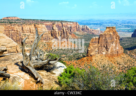 One of many spectacular views in the Colorado National Monument near Fruita, Colorado. - Stock Photo