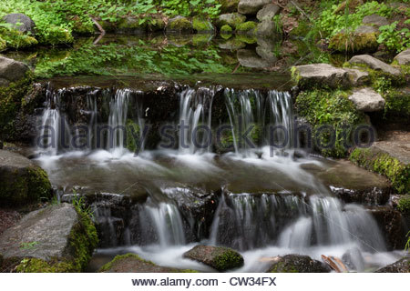 Water cascades from Fern Spring, a natural spring in the main valley of Yosemite National Park, California. - Stock Photo