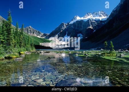 Cw Travel Canada Ltd