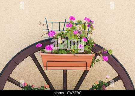 Floral display on an old cartwheel in a French village. - Stock Photo