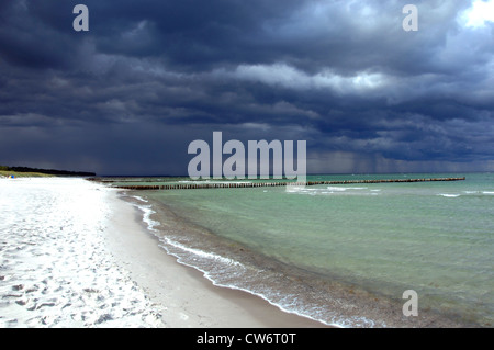 black clouds over sandy beach, Germany, Mecklenburg-Western Pomerania, Darss - Stock Photo