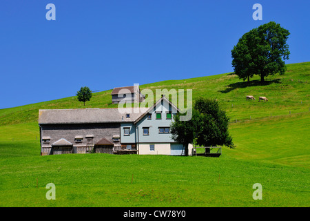 farmhouse in a hilly meadow landscape, Switzerland, Appenzell - Stock Photo