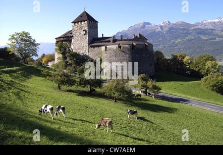 castle Vaduz, Liechtenstein - Stock Photo
