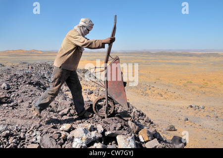 worker dumping a barrow of boulders, mining of lead sulfide , Morocco, Erg Chebbi - Stock Photo