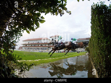 Iffezheim, race horses and their jockeys jump over a ditch - Stock Photo