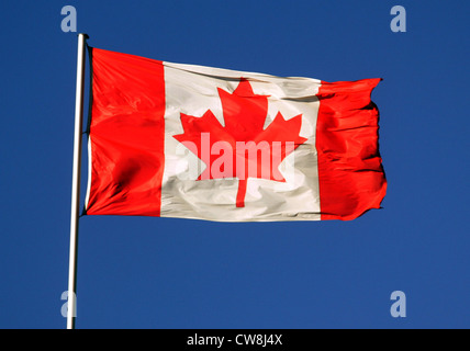 Symbol photo, National Flag of Canada in the wind - Stock Photo