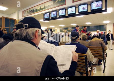 Belmont race track gambling sun coast casino movies
