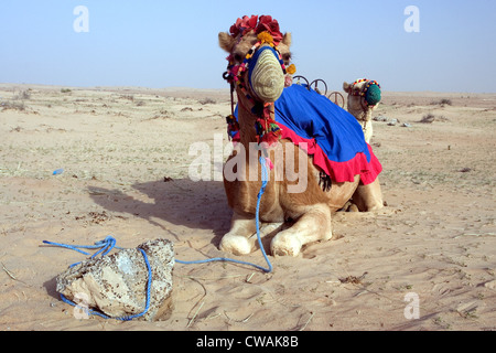 desert center middle eastern single men Meet single muslim men in desert center are you interested in meeting a single muslim man to love there are many single muslim men in desert center looking for someone to meet too.