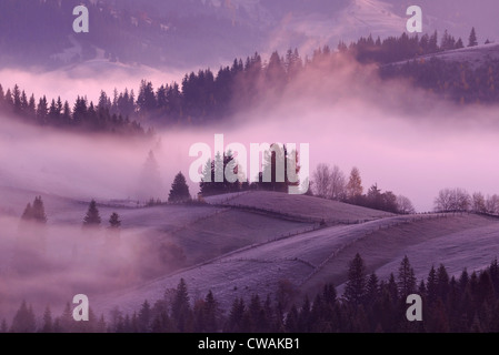 Misty sunrise, Krasnik village area, Carpathian Mountains, Ivano-Frankivsk region, Ukraine - Stock Photo