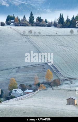 Misty morning, Krasnik village area, Carpathian Mountains, Ivano-Frankivsk region, Ukraine - Stock Photo