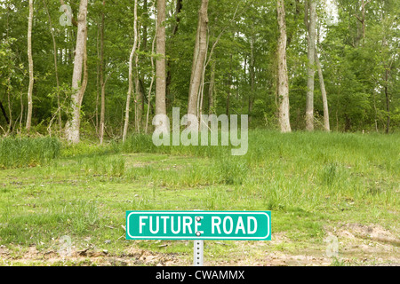 Road sign saying future road in forest - Stock Photo