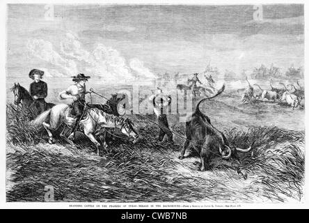 Cowboys branding cattle on the prairies of Texas. Woodcut from a sketch by James E. Taylor. Frank Leslie's illustrated - Stock Photo