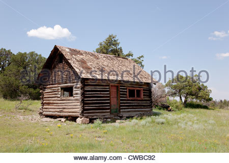 Old Log Cabin in Forest Arizona - Stock Photo