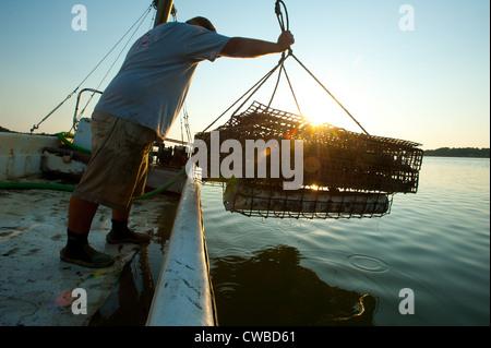 Oysterer dredging on oyster farm in Bayford VA - Stock Photo
