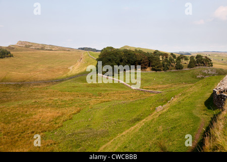 View from Housesteads Fort along Hadrians Wall, Northumberland, UK - Stock Photo
