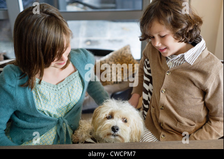 Boy and his sister playing with a dog - Stock Photo