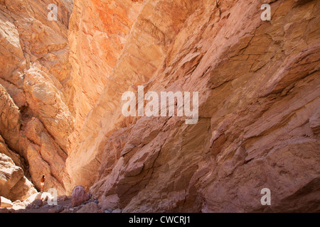 A hiker in slot canyon in Lake Mead National Recreation Area, near Las Vegas, Nevada. (Model Released) - Stock Photo