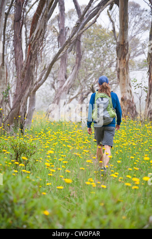 A woman is hiking in the Alpine National Park, Victoria, Australia. - Stock Photo