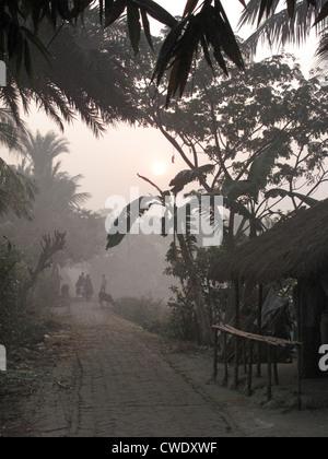 Morning in Bengali village - Stock Photo