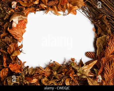 Autumn seasonal border with golden orange leaves a great rustic fall frame - Stock Photo