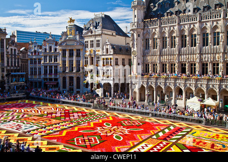 2012 Flower Carpet, Tapis de Fleurs, in front of the City Hall in the Grand-Place, Brussels - Stock Photo