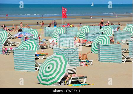 Sunbathers in summer sunbathing behind parasols and windbreaks on beach along the North Sea coast at Koksijde / - Stock Photo